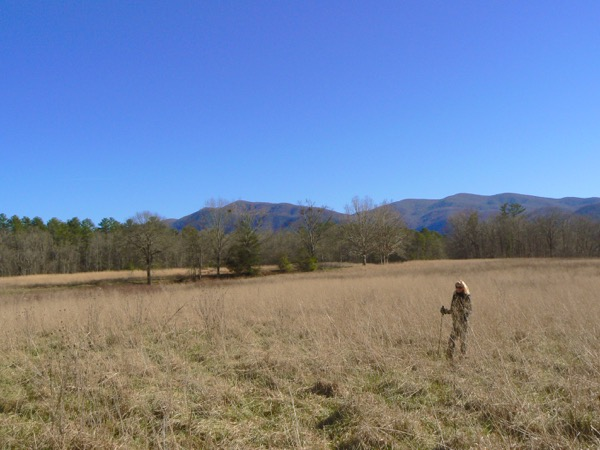 rachelle siegrist hiking in Cades Cove