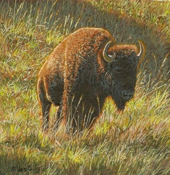 bison painting by wes Siegrist.jpg