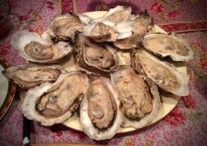 charleston oysters