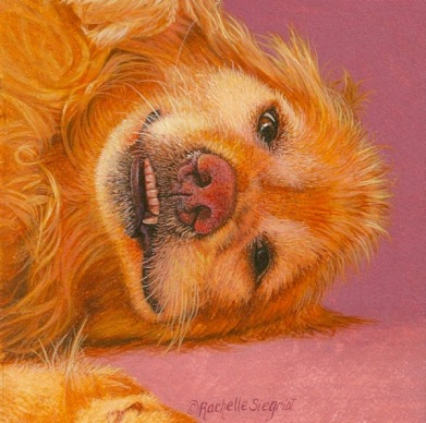 golden retriever painting #dogpainting by Rachelle Siegrist