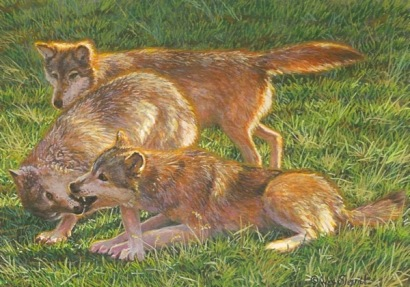 painting of wolves by wes Siegrist.jpg