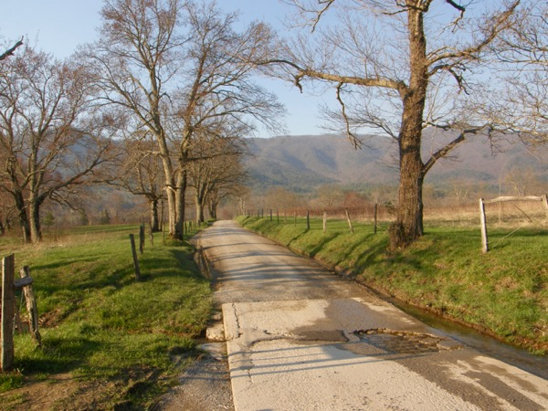 cades cove in spring.jpg