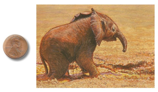 Puddle_Play elephant painting by_Wes_Siegrist.jpg