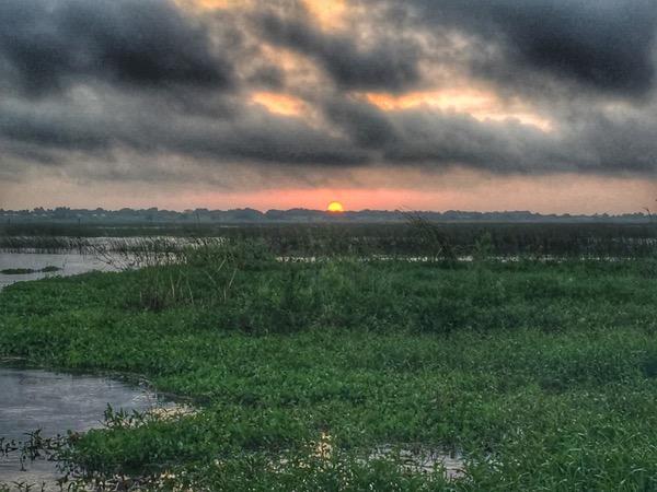 sunrise on lake okeechobee.jpg