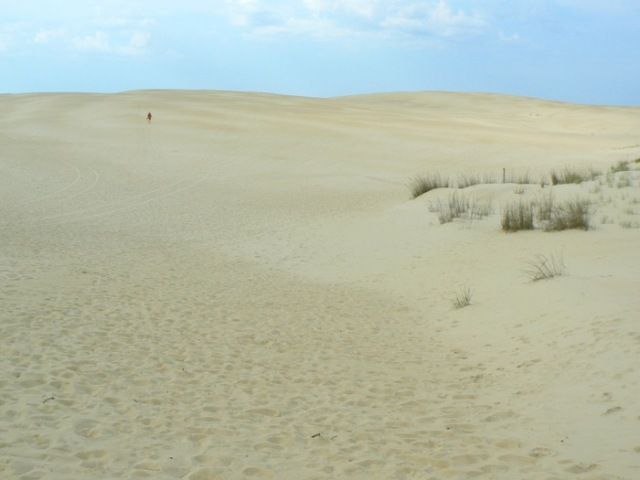 early morning at jockey's ridge state park
