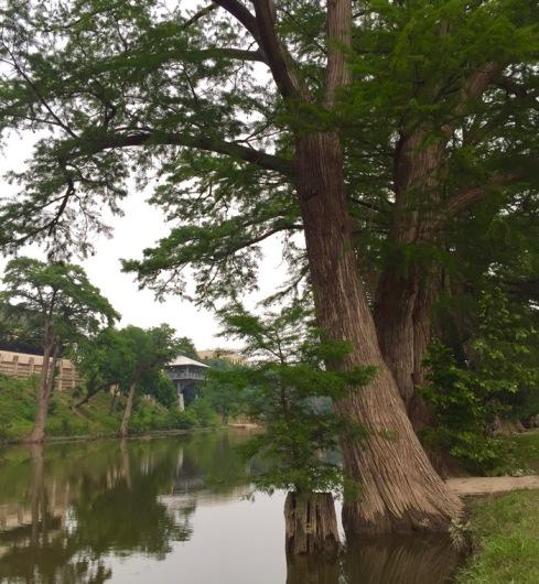 guadaloupe river walk  .jpg