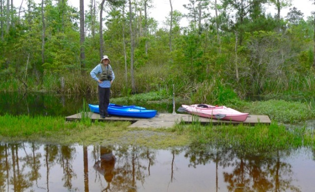 kayak launch site at alligator river national wildlife refuge.jpg