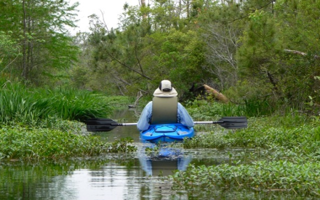 kayaking milltail creek paddle trails.jpg