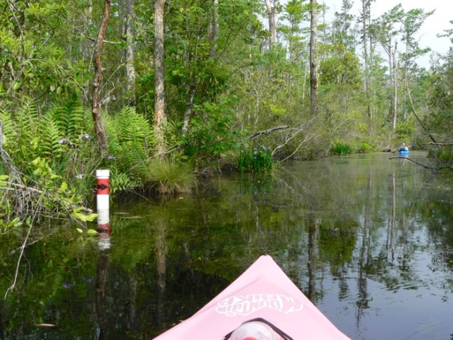 paddling marker along milltail creek.jpg