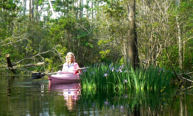 rachelle siegrist kayaking at alligator river national wildlife refuge.jpg