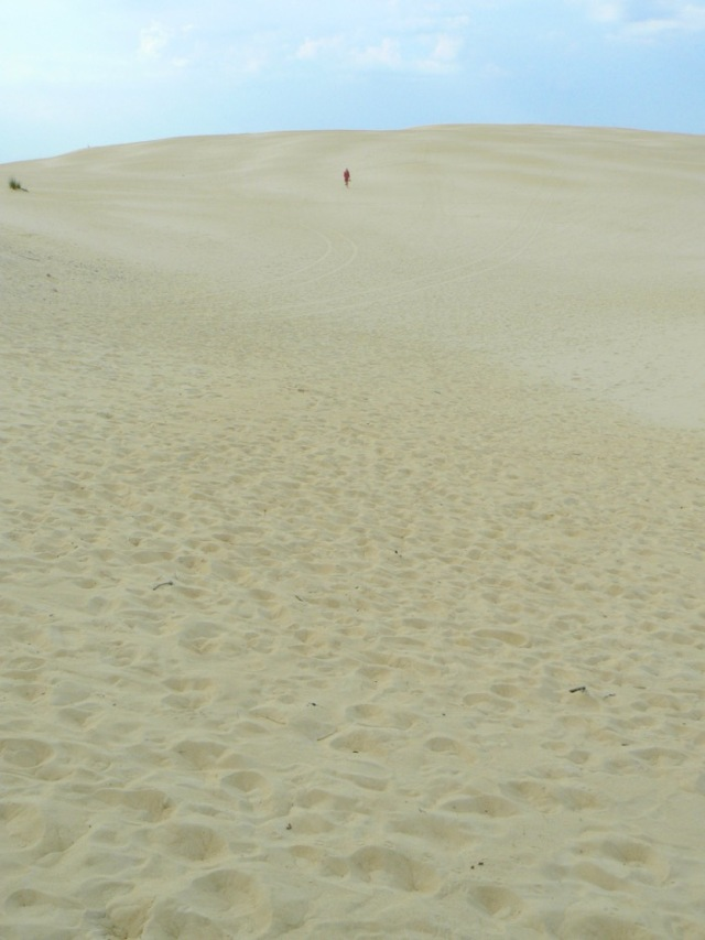 sand dunes at jockey's ridge state park.jpg