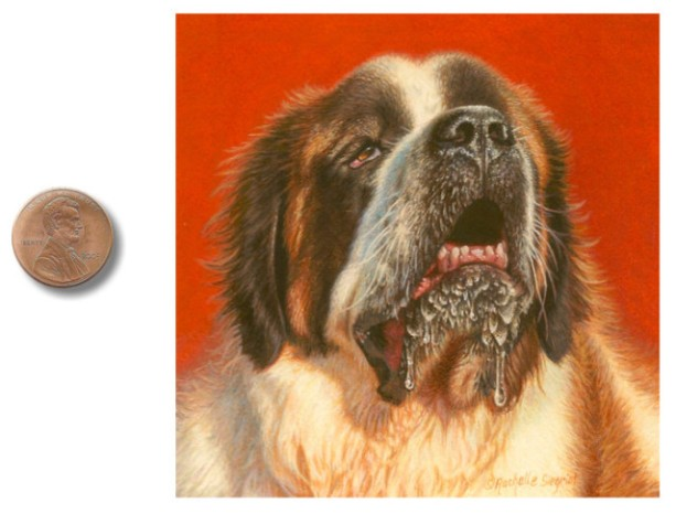 st-bernard-dog-painting by rachelle siegrist.jpg