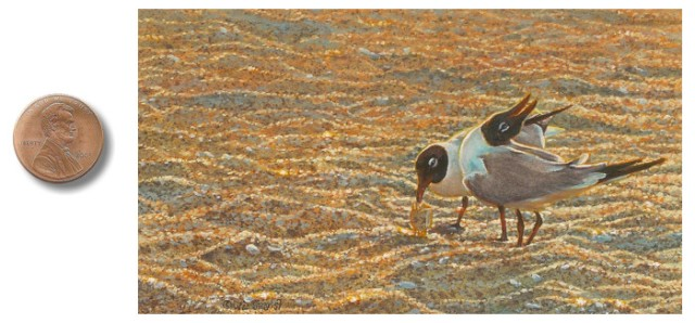 laughing gull painting No_Laughing_Matter_by_Wes_Siegrist.jpg