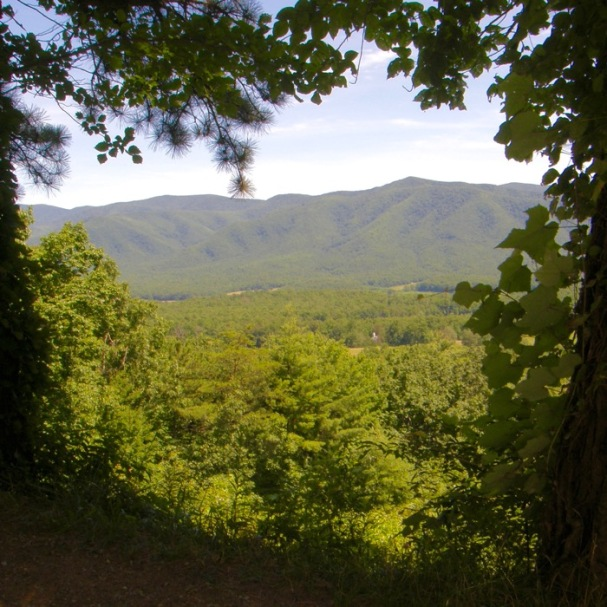 view from rich mountain rd in smokies.jpg