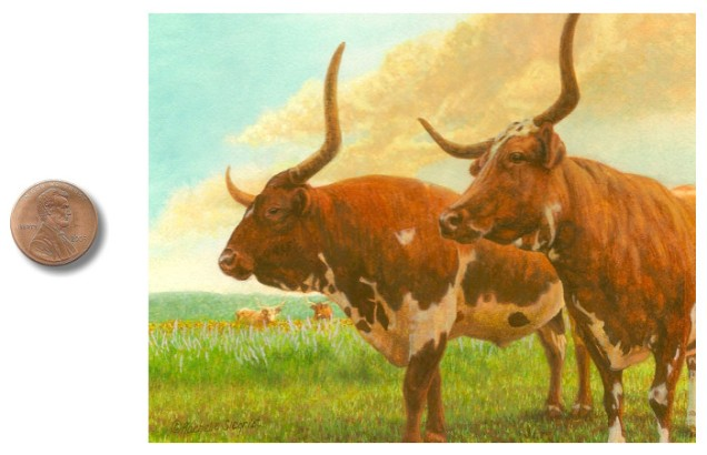longhorn painting by rachelle siegrist