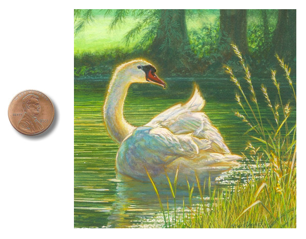 swan painting Bathed-In_Light_by_Wes_Siegrist.jpg