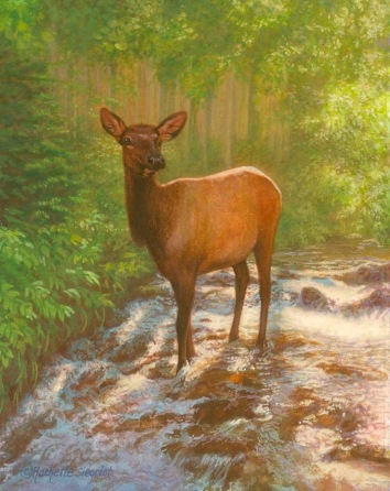 a-magical-encounter-elk-painitng-by-rachelle-siegrist
