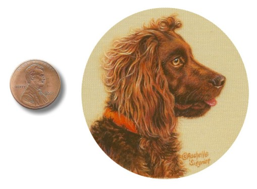 boykin spaniel painting, dog painting