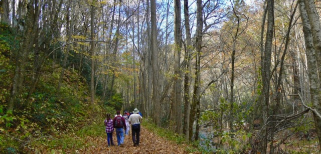 hiking little river trail in fall.jpg
