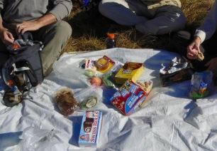 siegrist-picnic