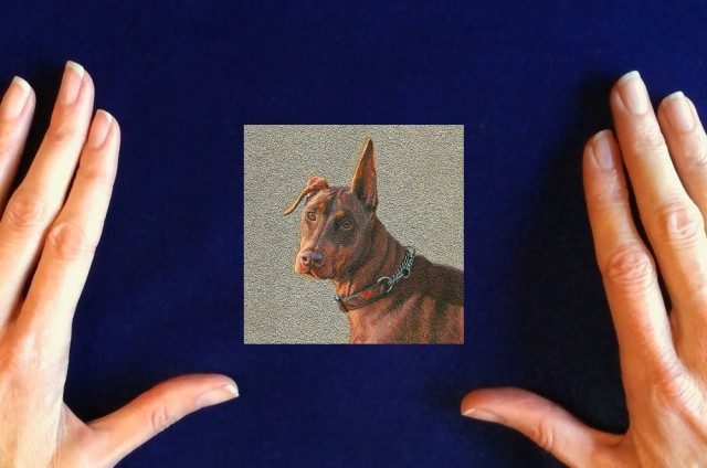 doberman-painting-dog-painting