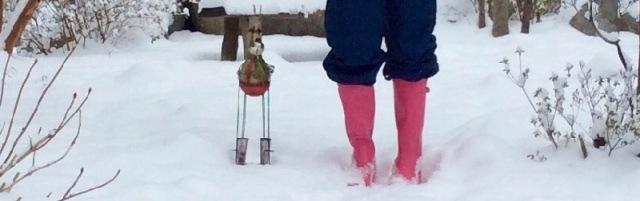 rachelle siegrist polar boots.jpg