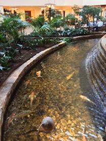 tulsa-renaissance-hotel-and-convention-center-natureworks