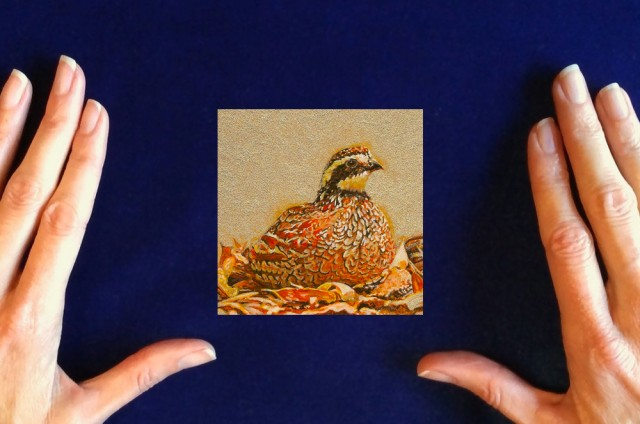 quail painting by wes siegrist, miniature quail painting