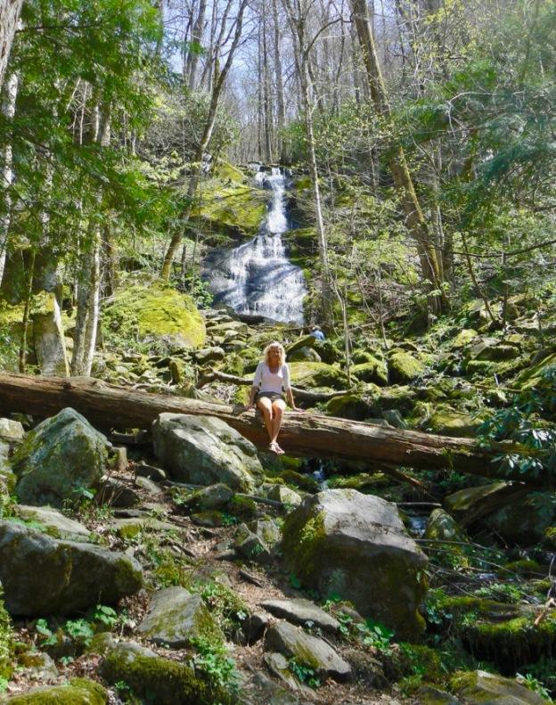 fern branch falls porter creek trail
