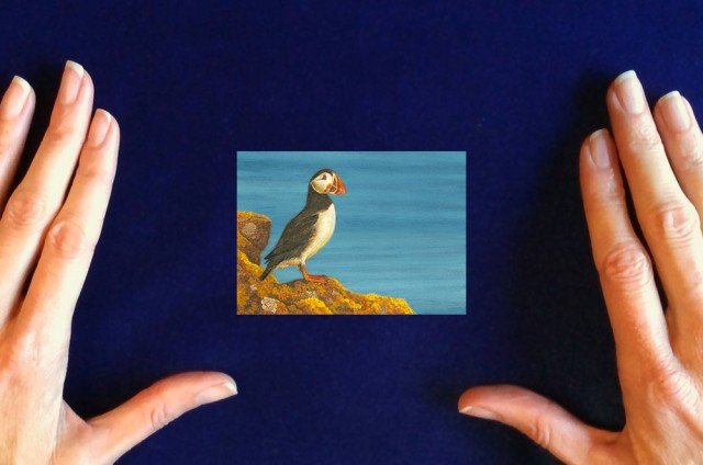 Puffin painting by Wes Siegrist1
