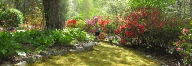 siegrists gardens.jpg