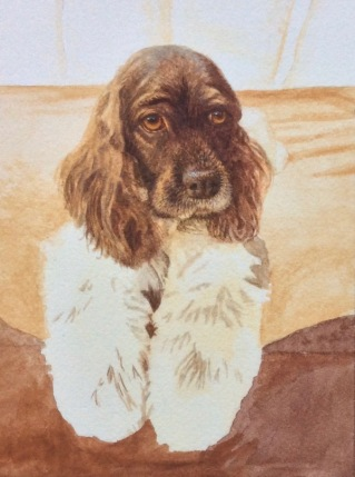 dog painting by Rachelle Siegrist5