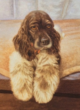 commission a dog painting by rachelle siegrist