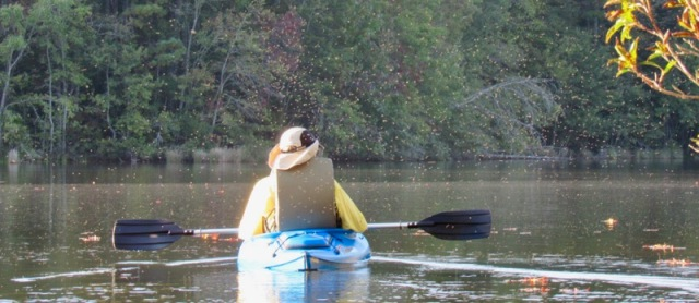 wes siegrist kayaking with gnats.jpg
