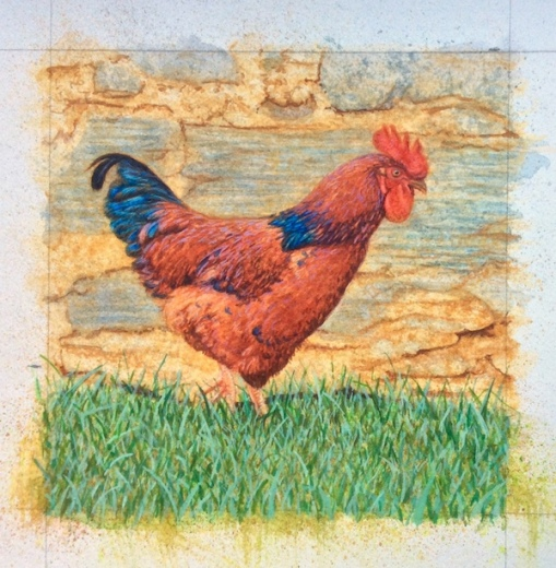 Rooster painting in progress by Rachelle Siegrist2