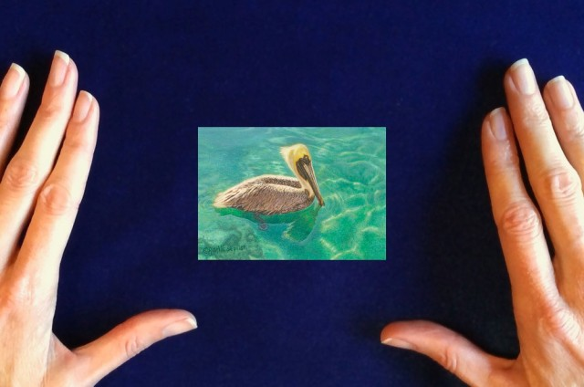 Pelican-painting_On_Blissful_Seas_by-Rachelle-Siegrist1