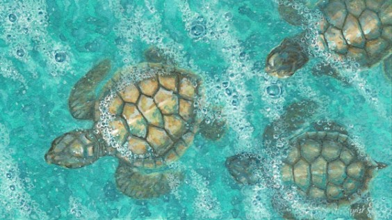 Sea Turtle Painting-Head_Of_The_Class-by Wes Siegrist
