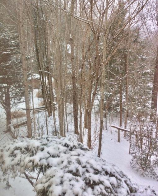 snow in the smokies