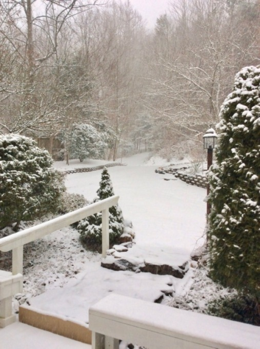 snow in the smoky mountains
