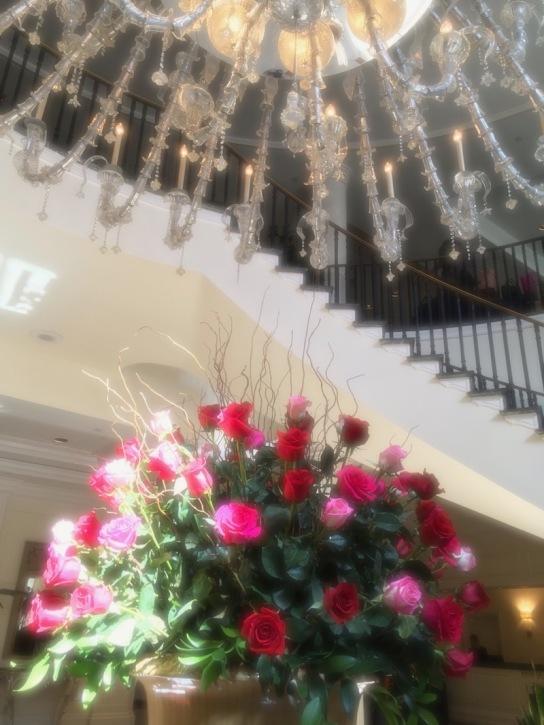 charleston place hotel SEWE