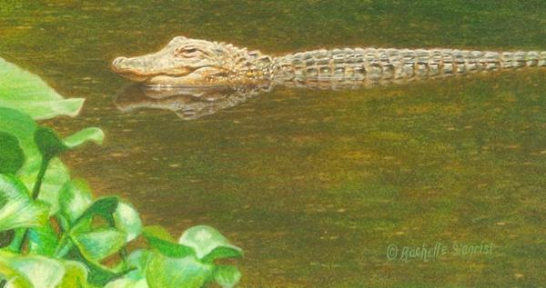 Wes & Rachelle Siegrist Miniature gator Painting