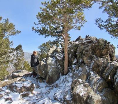 rachelle siegrist Rocky Mountain National Park