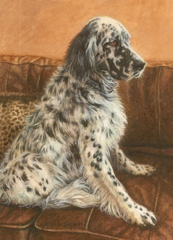 english setter dog painting Max by Rachelle Siegrist