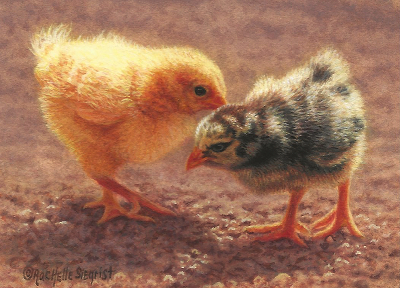Chick-painting-Barnyard_Cottonballs-by-Rachelle-Siegrist