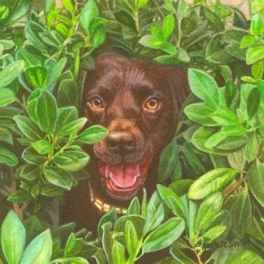 chocolate lab painting, dog painting by Rachelle Siegrist, commission a dog painting