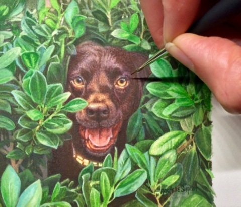 chocolate lab painting, dog painting by Rachelle Siegrist, commission a dog painting2
