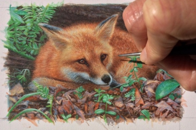 red fox painting in progress by rachelle siegrist