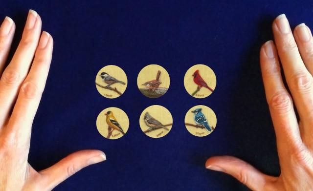 Songbirds-on-Silk-Series-by-Rachelle-Siegrist1