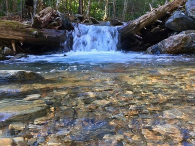 hiking alum cave bluffs 4