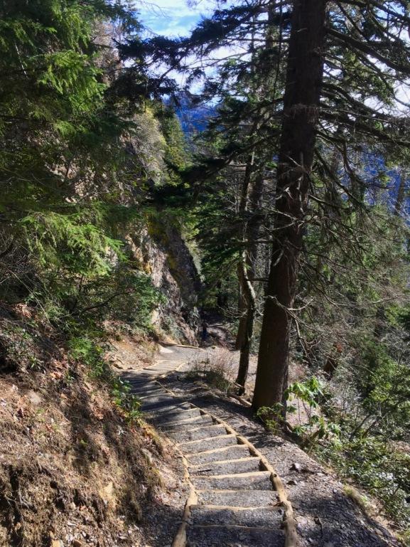 hiking alum cave bluffs 5